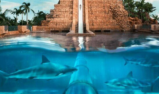 10 parques acuáticos para visitar en EAU