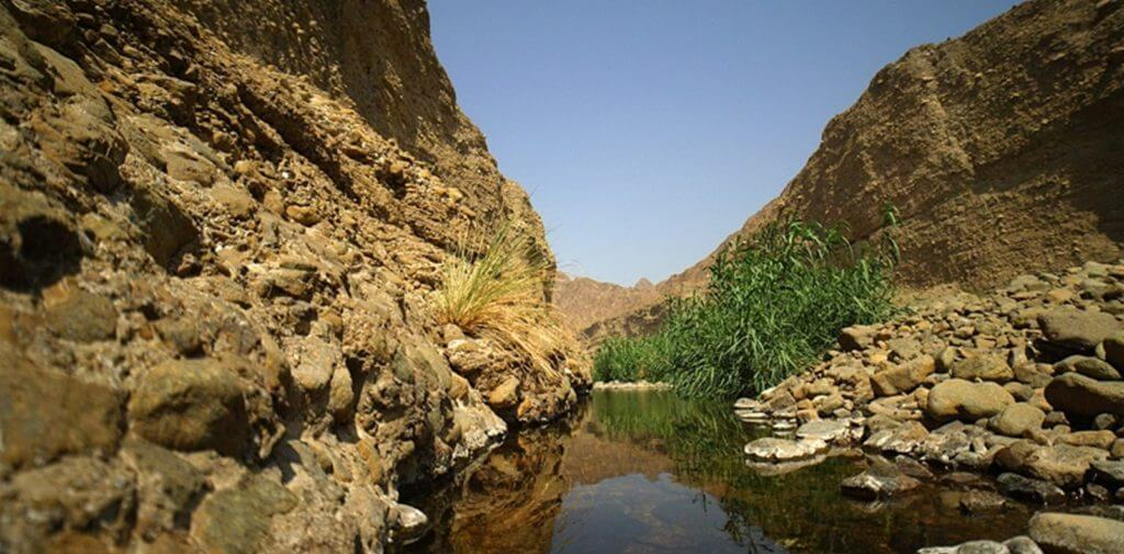 Wadi Wurayah vivir en dubai
