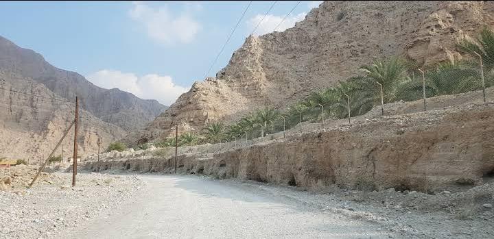Wadi Beih vivir en dubai