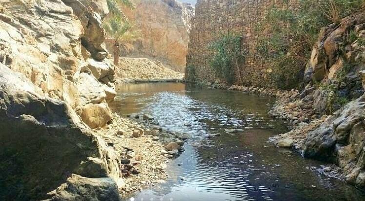 wadi shees vivir dubai