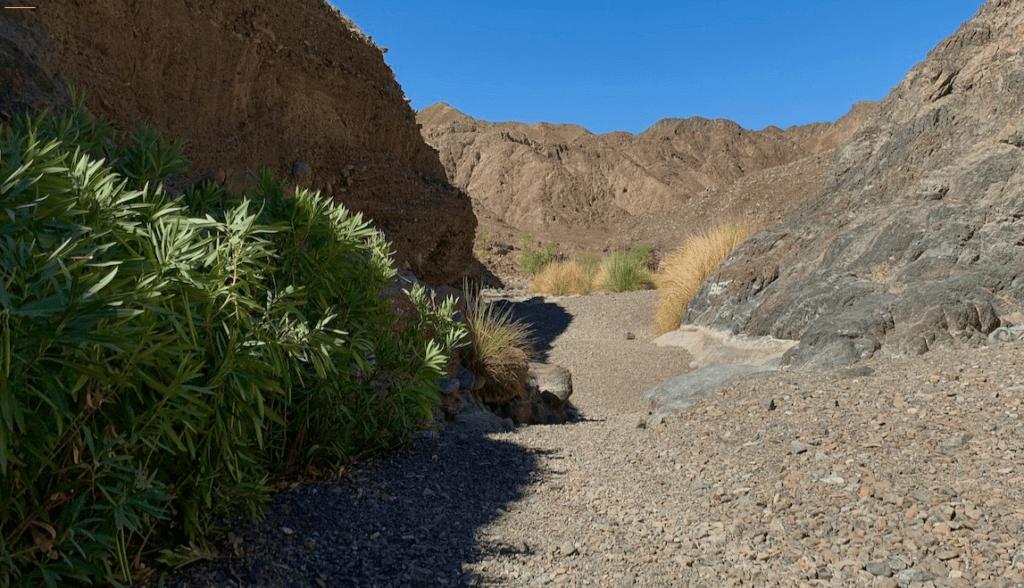 Shawka ruta excursión sombras wadi vivir dubai (5)