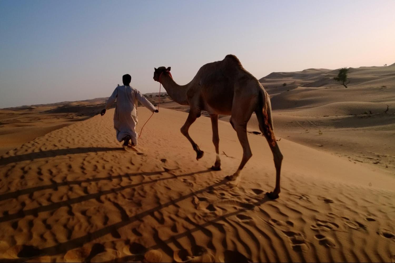 desert safari rak emiratos vivirendubai