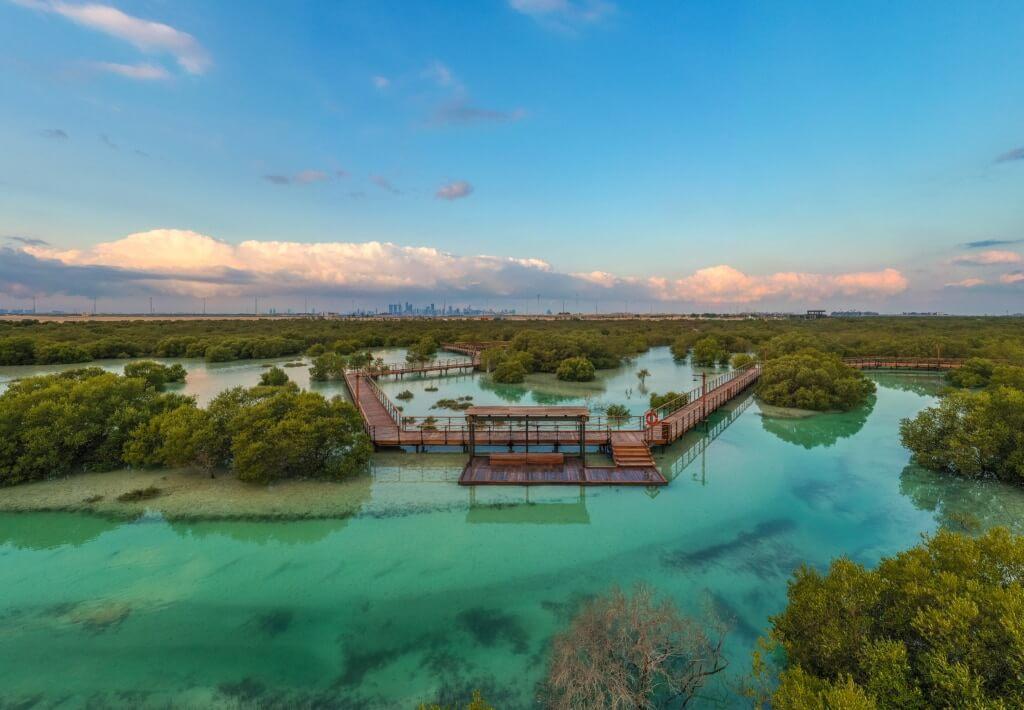 mangroves naturaleza EAU