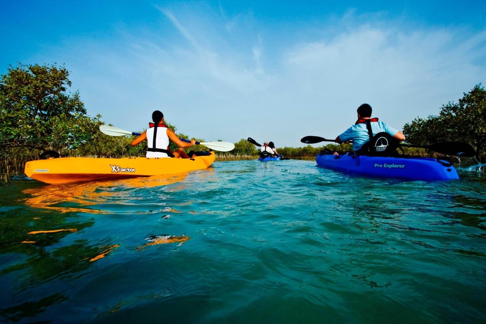mangroves emiratos kayak