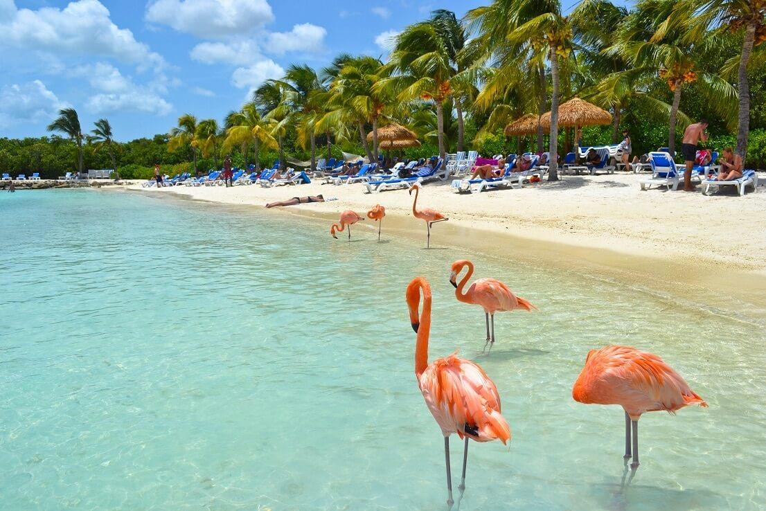 aruba caribe visita emiratos