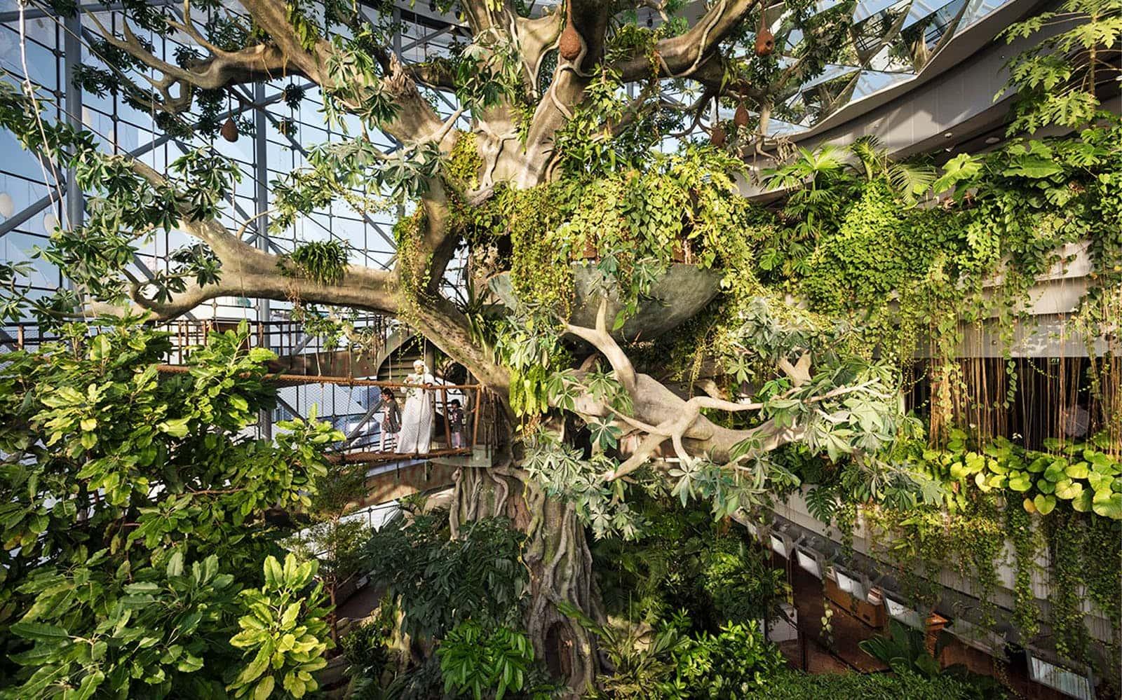 green planet dubai selva que hacer